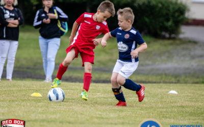 Zespoły w Wielkopolskim Związku Piłki Nożnej